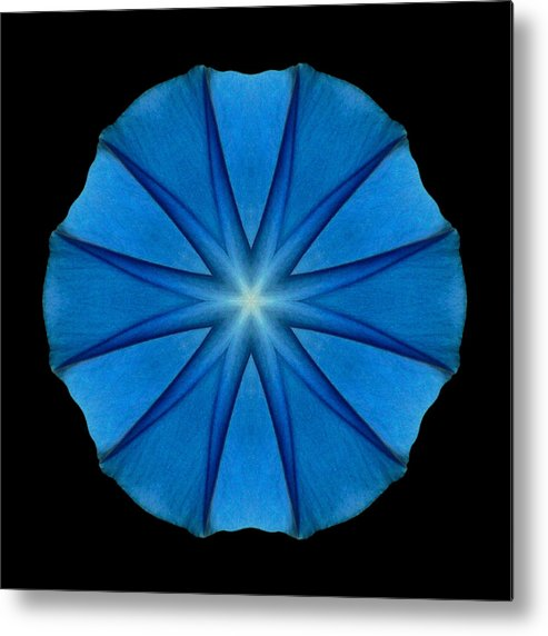 Flower Metal Print featuring the photograph Blue Morning Glory Flower Mandala by David J Bookbinder