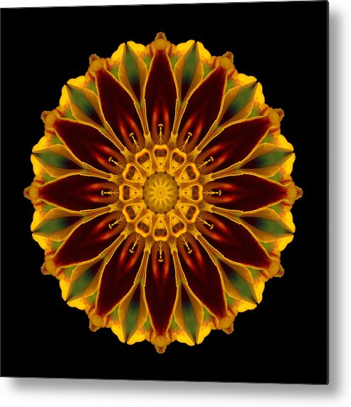 Flower Metal Print featuring the photograph Marigold Flower Mandala by David J Bookbinder