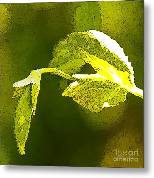 Peas Metal Print featuring the painting Fresh Peas by Artist and Photographer Laura Wrede