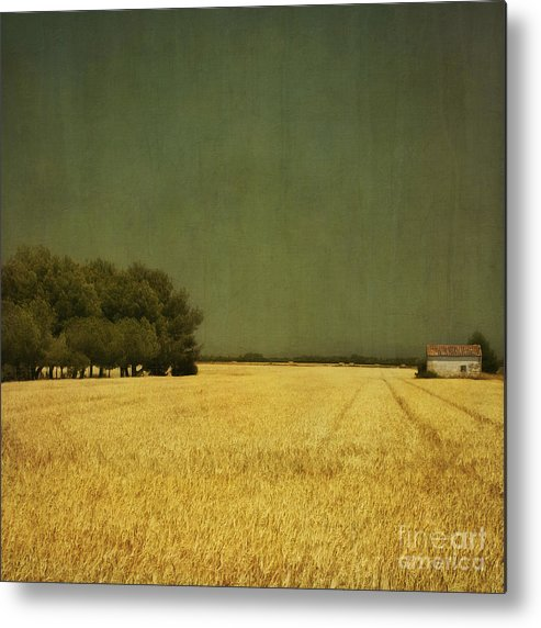 White Metal Print featuring the photograph White Barn by Paul Grand