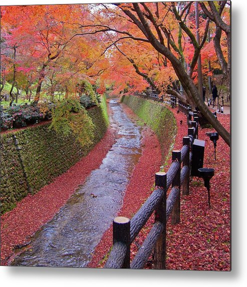 Square Metal Print featuring the photograph Fall Colors Along Bending River In Kyoto by Jake Jung