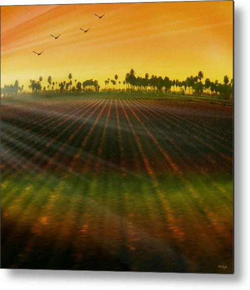 Landscape Metal Print featuring the photograph Morning Has Broken by Holly Kempe
