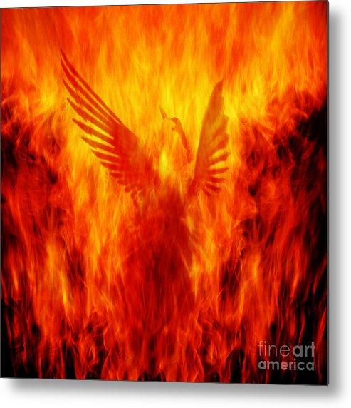 Phoenix Metal Print featuring the photograph Phoenix Rising by Andrew Paranavitana