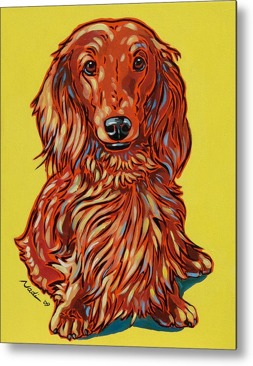 Dachshund Metal Print featuring the painting Long Haired Dachshund by Nadi Spencer