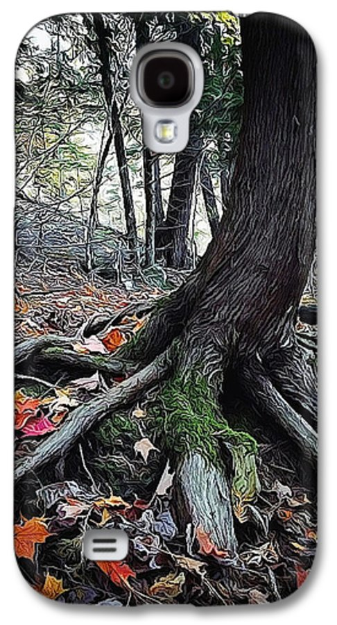 Tree Galaxy S4 Case featuring the photograph Ancient Root by Natasha Marco