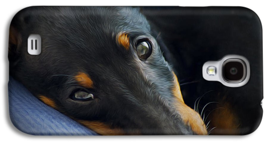 Puppy Galaxy S4 Case featuring the photograph Best Friend by Aged Pixel