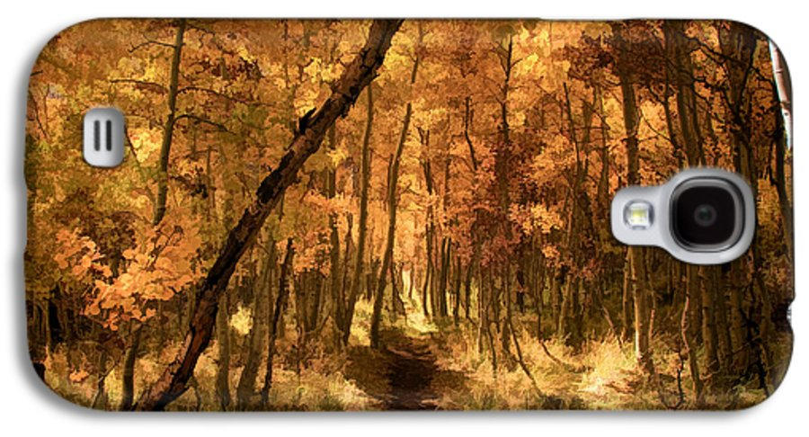 June Lake Galaxy S4 Case featuring the photograph Down The Golden Path by Donna Kennedy