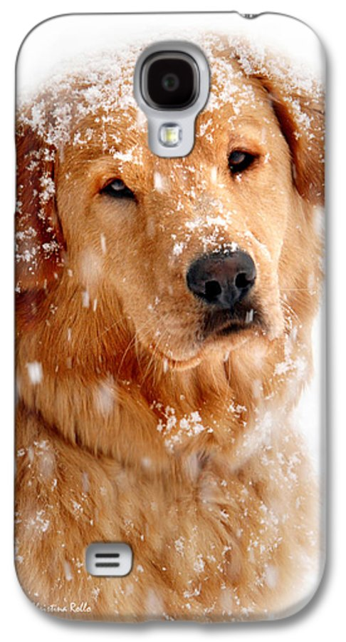 Dog Galaxy S4 Case featuring the photograph Frosty Mug by Christina Rollo