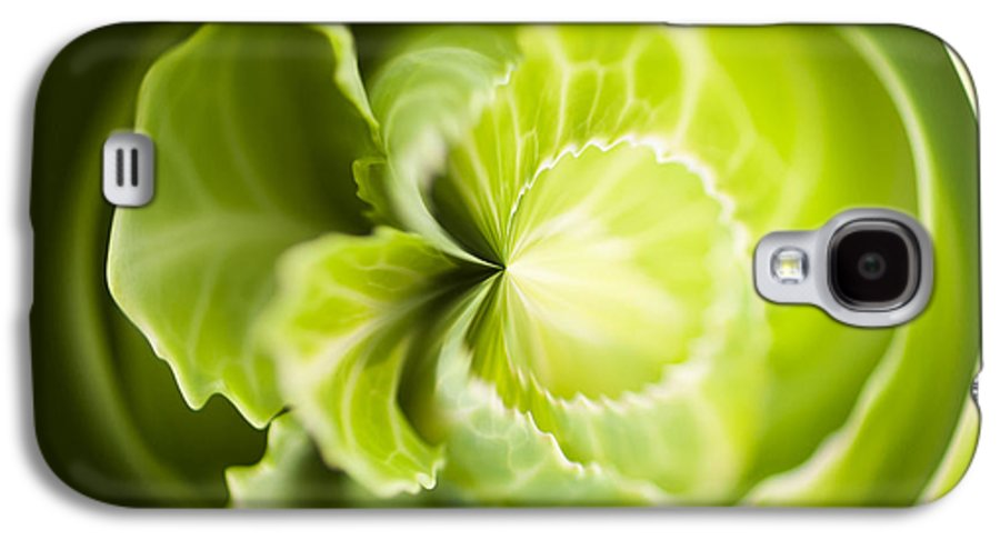 Anne Gilbert Galaxy S4 Case featuring the photograph Green Cabbage Orb by Anne Gilbert