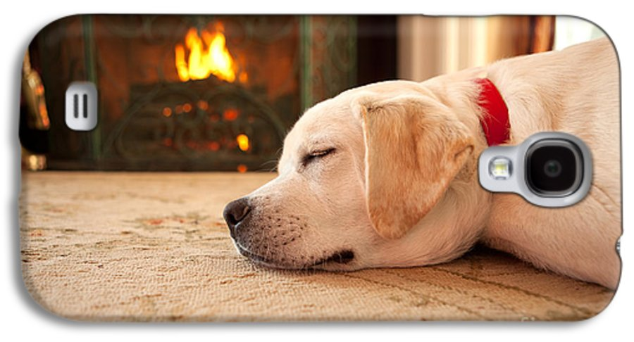 Puppy Galaxy S4 Case featuring the photograph Puppy Sleeping By A Fireplace by Diane Diederich