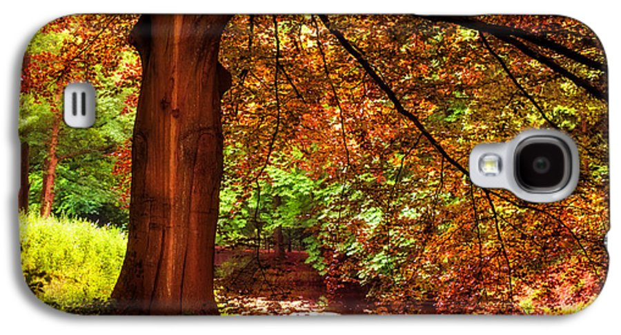 Utrecht Galaxy S4 Case featuring the photograph Tree In The Park. De Haar Castle. Utrecht by Jenny Rainbow