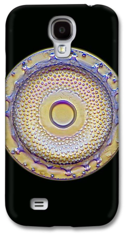 Alga Galaxy S4 Case featuring the photograph Fossil Diatom, Light Micrograph by Frank Fox