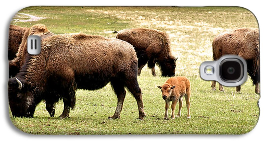 Bison Galaxy S4 Case featuring the photograph The Mighty Bison by Ellen Heaverlo