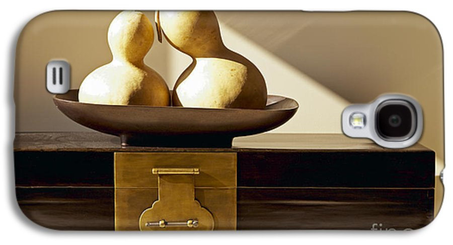 Art Galaxy S4 Case featuring the photograph Gourds Still Life II by Kyle Rothenborg - Printscapes