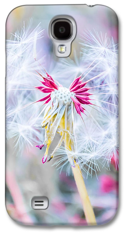 Pink Galaxy S4 Case featuring the photograph Pink Dandelion by Parker Cunningham