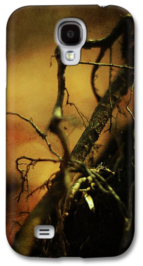 Tree Galaxy S4 Case featuring the photograph Roots Of Life by Rebecca Sherman