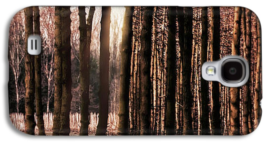 Trees Galaxy S4 Case featuring the photograph Trees Gathering by Wim Lanclus
