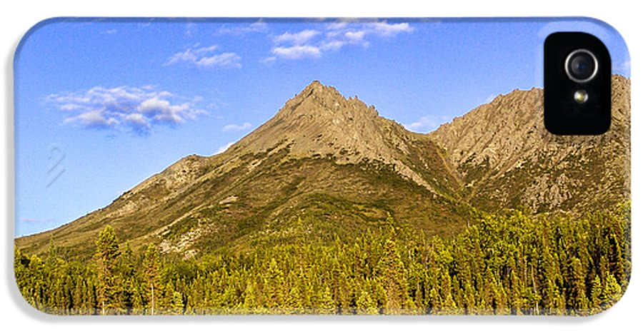 Trees IPhone 5 / 5s Case featuring the photograph Alaska Mountains by Chad Dutson