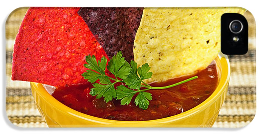 Salsa IPhone 5 / 5s Case featuring the photograph Tortilla Chips And Salsa by Elena Elisseeva