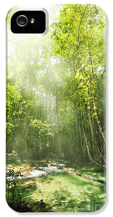Adventure IPhone 5 / 5s Case featuring the photograph Waterfall In Rainforest by Atiketta Sangasaeng