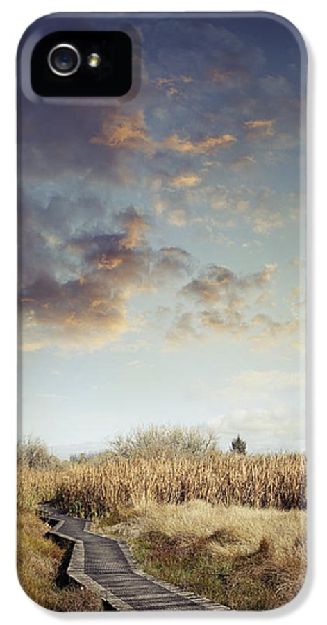 Sky IPhone 5 / 5s Case featuring the photograph Wetland Walk by Les Cunliffe