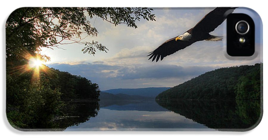 Eagle IPhone 5 / 5s Case featuring the photograph A New Beginning by Lori Deiter