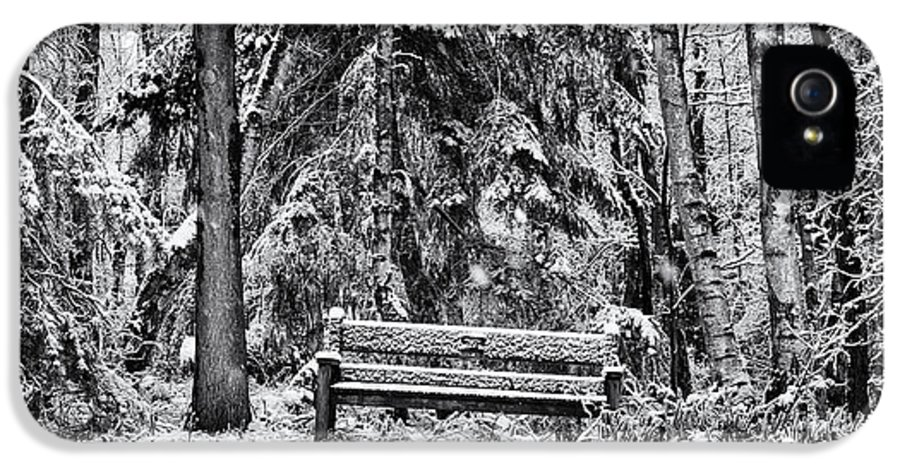 Snow IPhone 5 / 5s Case featuring the photograph A Quiet Place by Tim Gainey