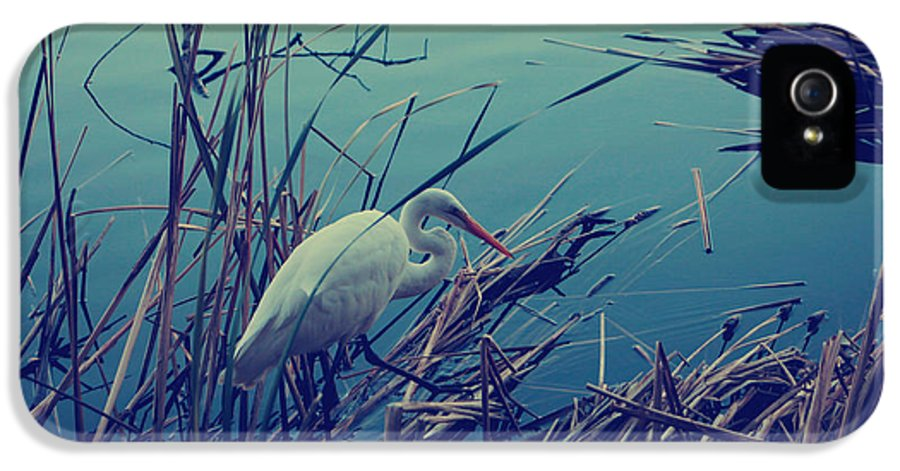 Lake Temescal IPhone 5 / 5s Case featuring the photograph As The Light Fades by Laurie Search