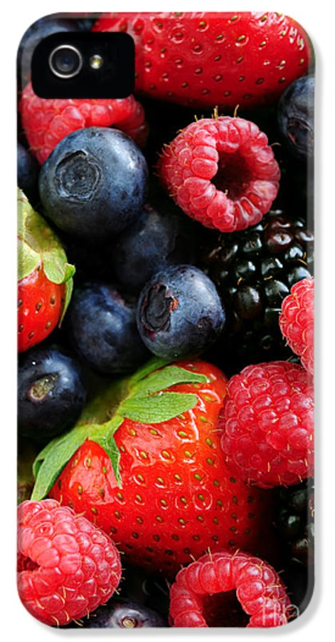 Berry IPhone 5 / 5s Case featuring the photograph Assorted Fresh Berries by Elena Elisseeva