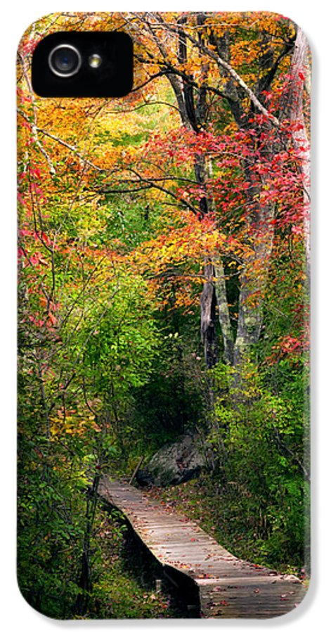 Autumn IPhone 5 / 5s Case featuring the photograph Autumn Boardwalk by Bill Wakeley