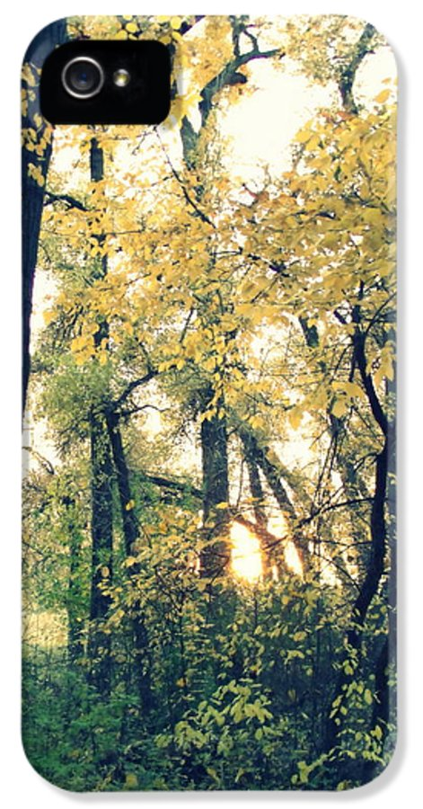 Fall Colors IPhone 5 / 5s Case featuring the photograph Autumn Evening by Jessica Myscofski