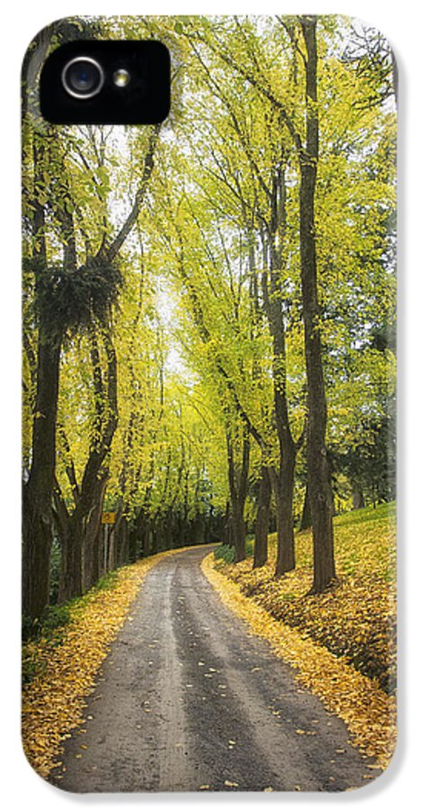 Autumn IPhone 5 / 5s Case featuring the photograph Autumns Day by Kim Andelkovic
