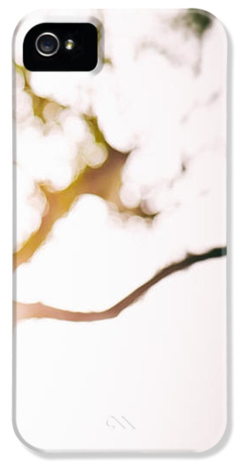 Abstract IPhone 5 / 5s Case featuring the photograph Beneath A Tree 14 4945 Triptych Set 3 Of 3 by Ulrich Schade
