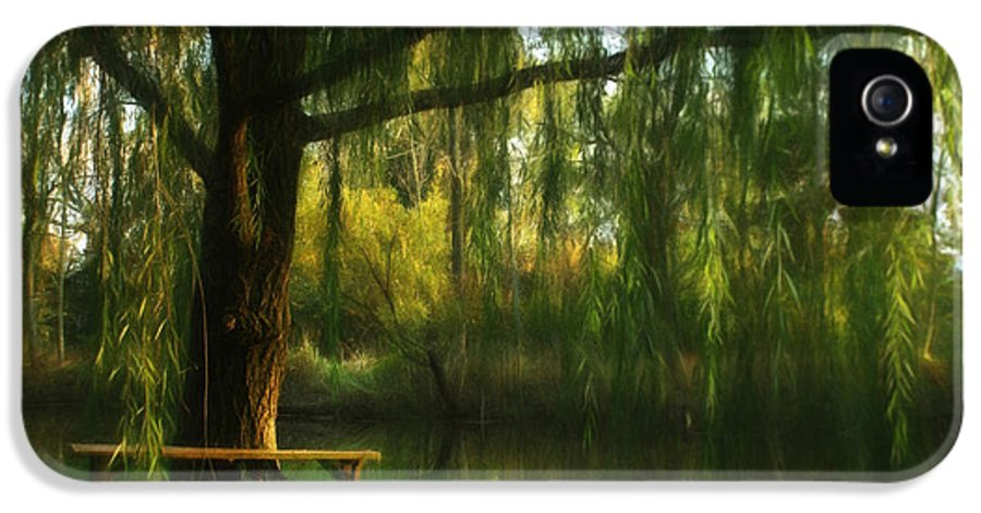 Weeping IPhone 5 / 5s Case featuring the photograph Beneath The Willow by Lori Deiter