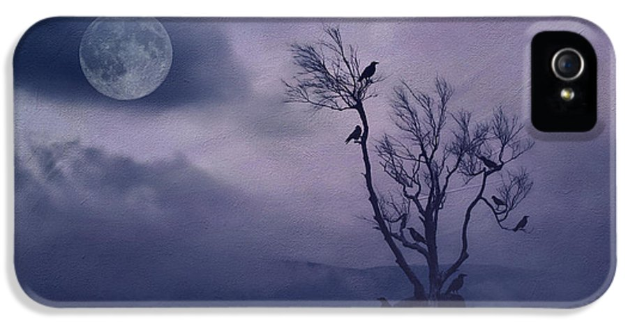 Tree IPhone 5 / 5s Case featuring the photograph Birds In The Night by Darren Fisher