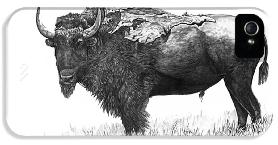 Bison IPhone 5 / 5s Case featuring the painting Bison by Aaron Spong