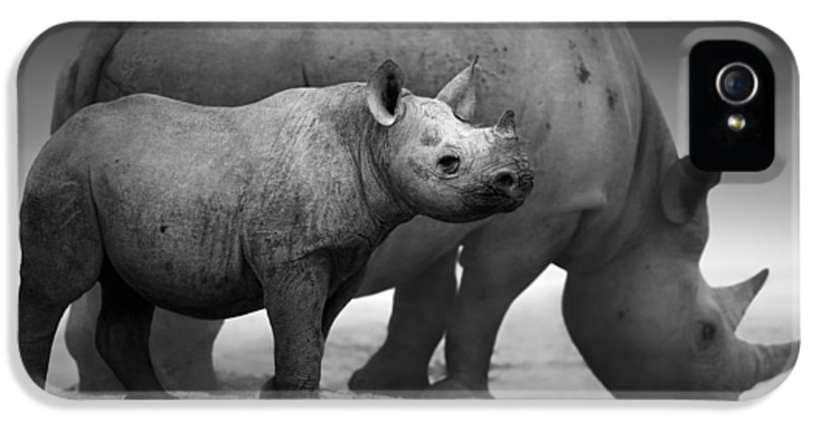 Wild IPhone 5 / 5s Case featuring the photograph Black Rhinoceros Baby And Cow by Johan Swanepoel