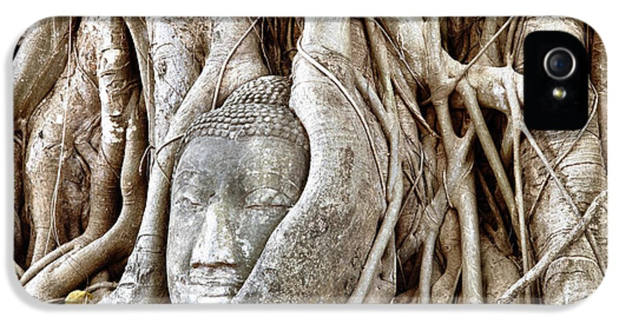 Asia IPhone 5 / 5s Case featuring the photograph Buddha Head In Tree Wat Mahathat Ayutthaya Thailand by Fototrav Print