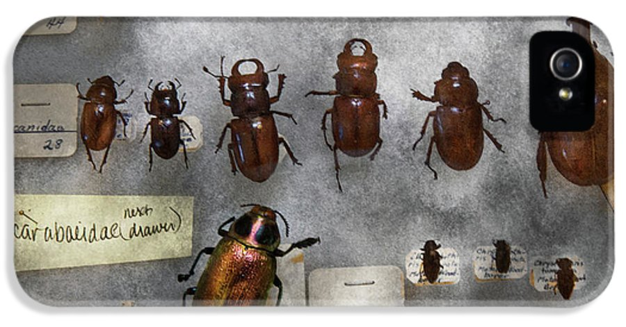 Hdr IPhone 5 / 5s Case featuring the photograph Bug Collector - The Insect Collection by Mike Savad