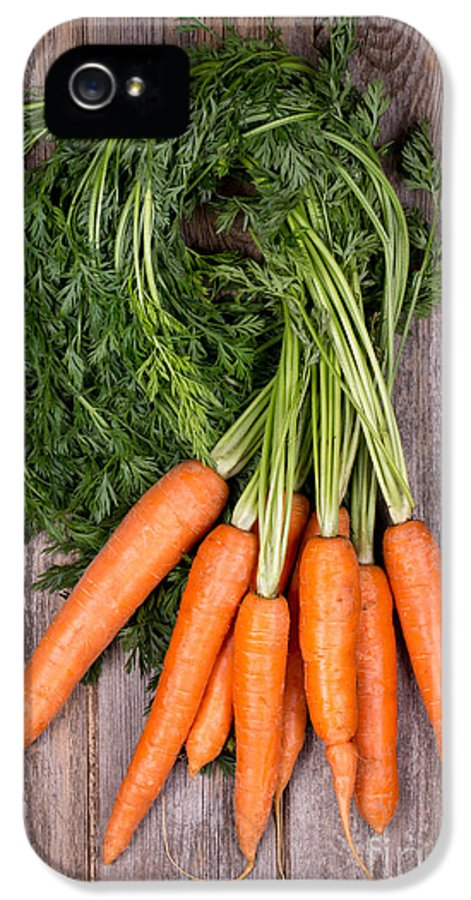 Agriculture IPhone 5 / 5s Case featuring the photograph Bunched Carrots by Jane Rix