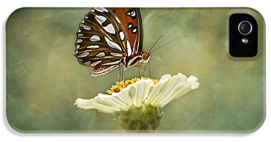 Butterfly IPhone 5 / 5s Case featuring the photograph Butterfly Dreams by Kim Hojnacki