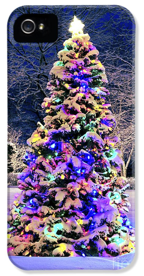 Christmas IPhone 5 / 5s Case featuring the photograph Christmas Tree In Snow by Elena Elisseeva