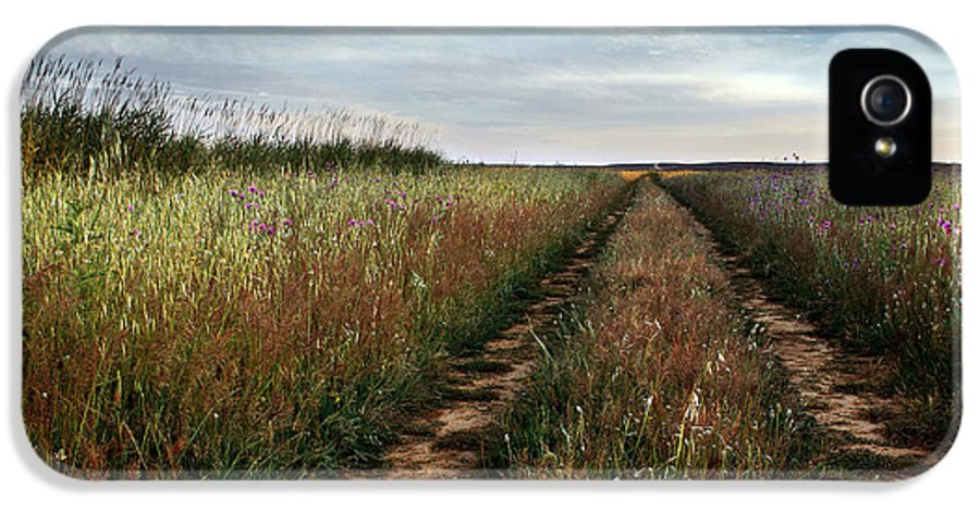 Adventure IPhone 5 / 5s Case featuring the photograph Countryside Tracks by Carlos Caetano