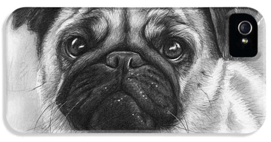 Dog IPhone 5 / 5s Case featuring the drawing Cute Pug by Olga Shvartsur