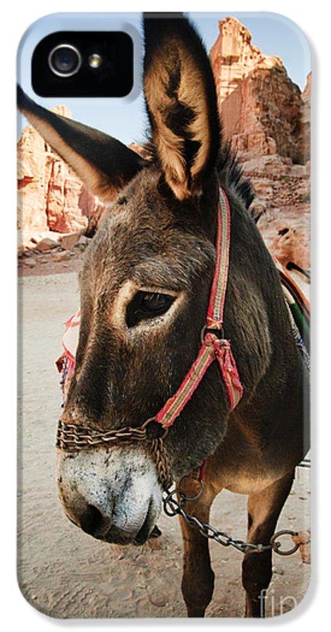 Donkey IPhone 5 / 5s Case featuring the pyrography Donkey by Jelena Jovanovic
