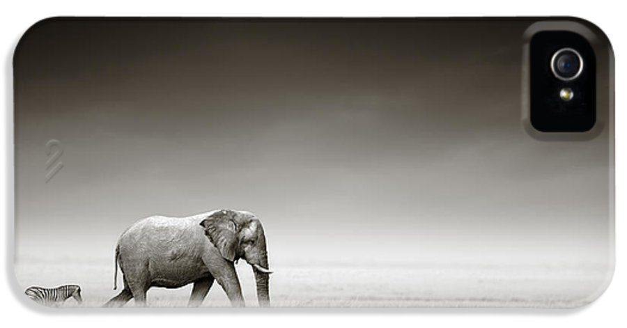 Elephant; Zebra; Behind; Follow; Huge; Big; Grass; Grassland; Field; Open; Plains; Grassfield; Dark; Sky; Together; Togetherness; Art; Artistic; Black; White; B&w; Monochrome; Image; African; Animal; Wildlife; Wild; Mammal; Animal; Two; Moody; Outdoor; Nature; Africa; Nobody; Photograph; Etosha; National; Park; Loxodonta; Africana; Walk; Namibia IPhone 5 / 5s Case featuring the photograph Elephant With Zebra by Johan Swanepoel
