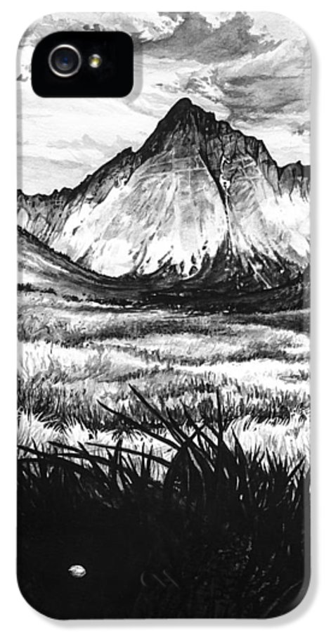 Faith IPhone 5 / 5s Case featuring the painting Faith As A Mustard Seed by Aaron Spong