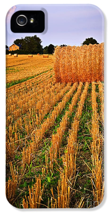 Farm IPhone 5 / 5s Case featuring the photograph Farm Field With Hay Bales At Sunset In Ontario by Elena Elisseeva