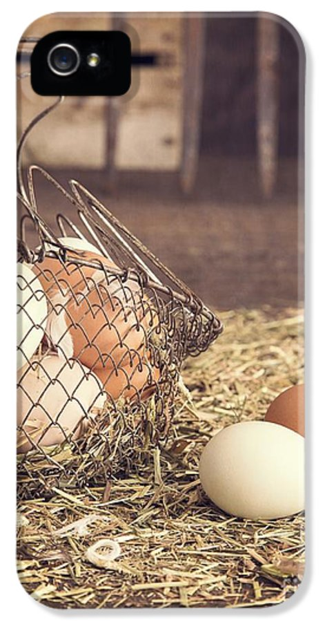 Agricultural IPhone 5 / 5s Case featuring the photograph Farm Fresh Eggs by Edward Fielding