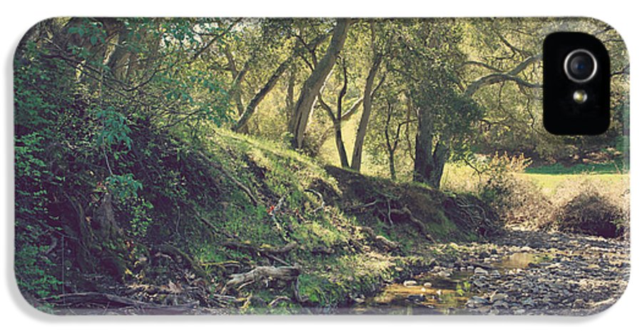 Dry Creek Pioneer Regional Park IPhone 5 / 5s Case featuring the photograph For A Time You Were Mine by Laurie Search